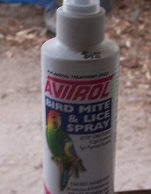 Avairy Bird- Flea and lice